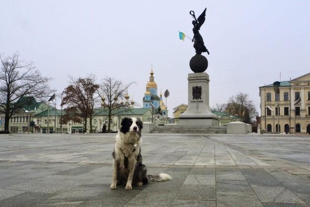 Corey charkov ukrajina