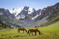 Ochutnávka Kyrgyzského Tian Shanu: Trek udolím Jeti oguz, přes sedlo Teleti a zpět do Karakolu