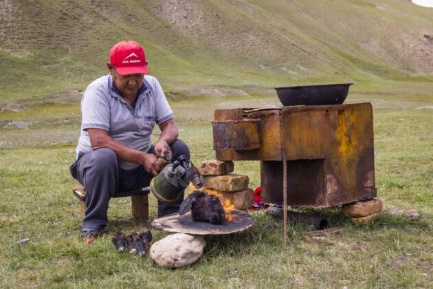 16 Varena Ovci Hlava Kyrgyzstan