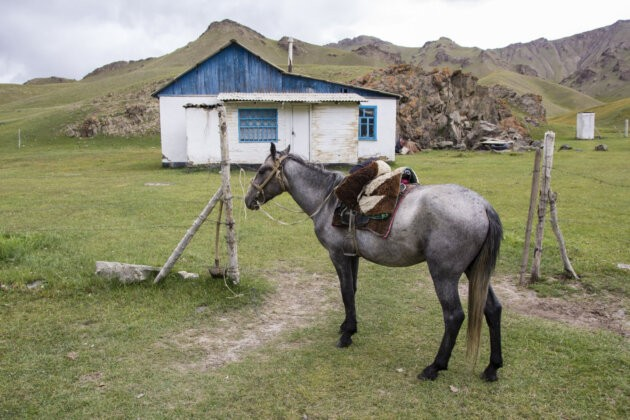 47 Kun Usedlost Kyrgyzstan