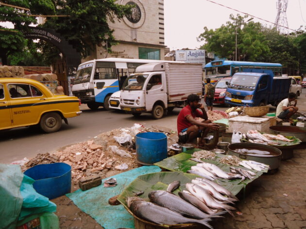 Bengalsko Trh Ryby