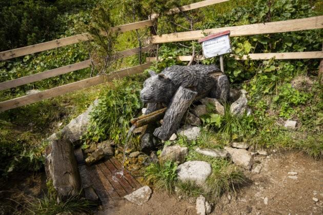 18 Nizke Tatry dreveny medved pramen pod chabencom