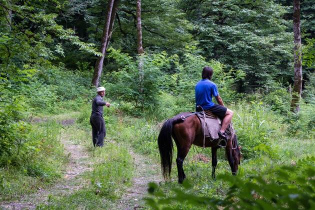 cestovatel na koni