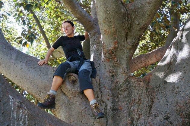 katka krejcova na strome