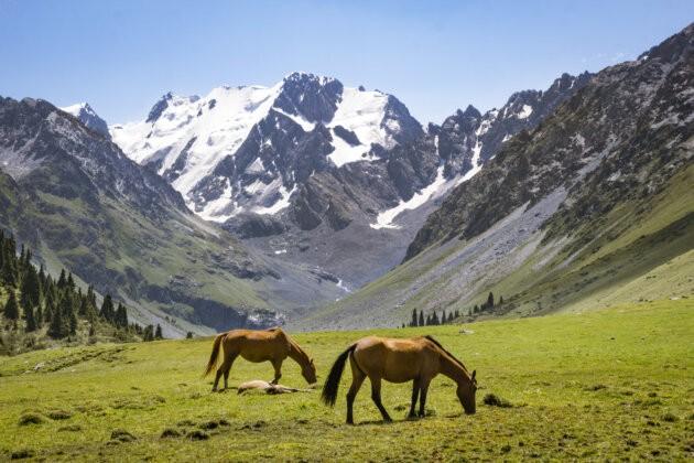 Kone Kyrgyzstan