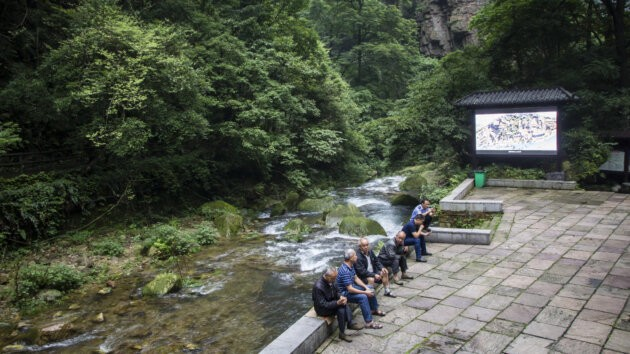 Cina Televize V Lese Zhangjiajie