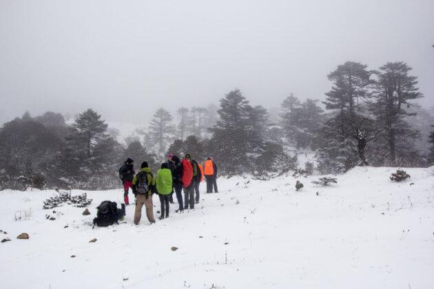 Vyprava V Zime