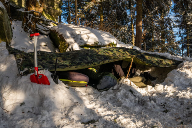 spani v zime na snehu